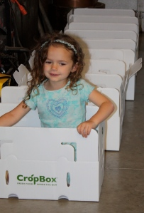 "Maeve likes to play ""train"" when the boxes are lined up ready to be packed in the morning."