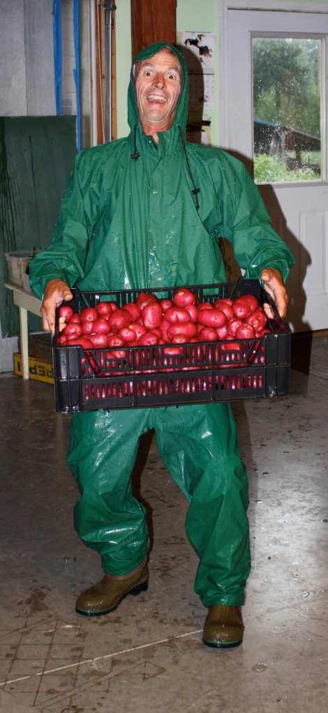 Scott washing the potatoes in the rain.