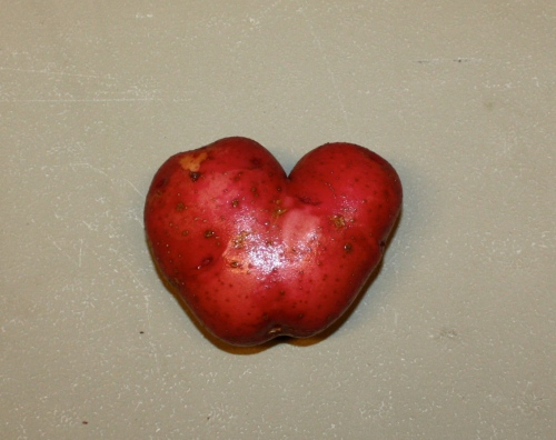A heart shaped potato.