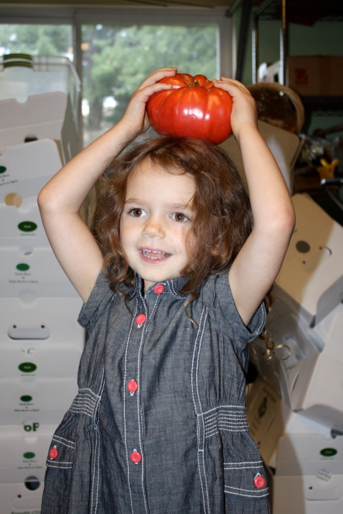 Maeve helping unload the tomato harvest.