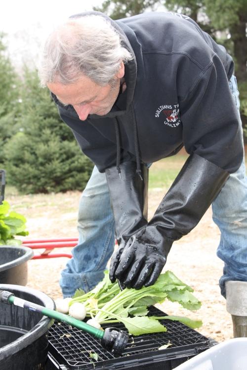 Scott washing the Turnips.