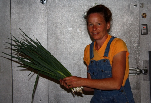 "Bundles of Green onions ready to be banded….it looks like I am a huge fan of the ""spray tan"" this year!"