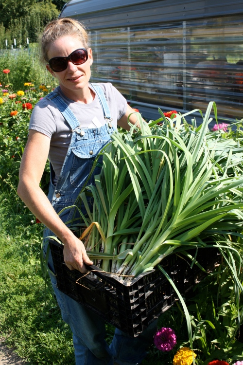 Taking the summer leeks up to the washing station from the garden.