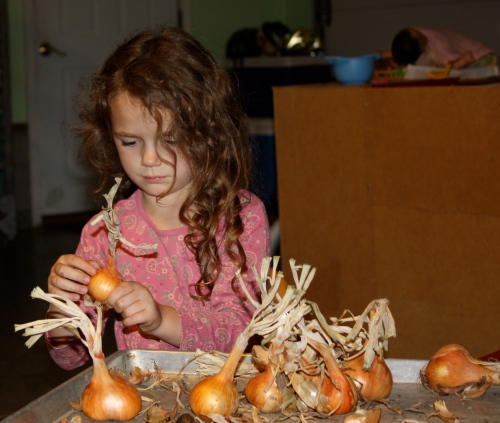 Maeve helped clean the shallots this week.