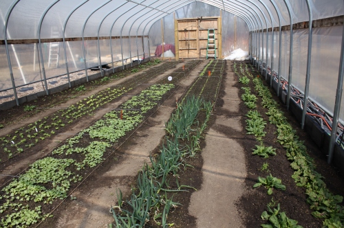 The hoop house packed with Spring Share goodies!