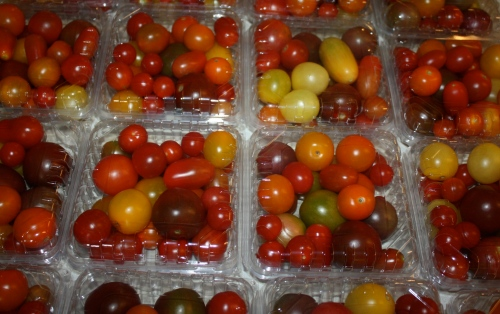 Cherry tomatoes packed and ready for the shares.