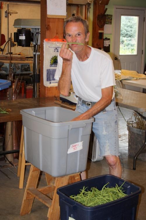 Scott packing green  beans.