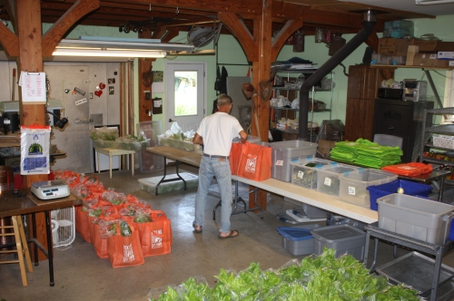 Scott packing the shares this morning.....it takes a lot longer with such a bounty!