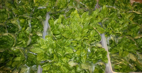 Basil Bouquets ready to be taken home!