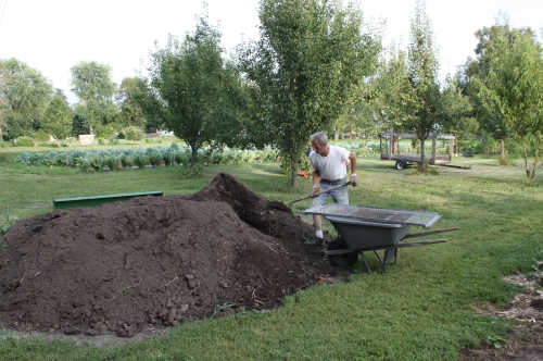 Scott sifting our 3 year old compost before it goes into the garden.
