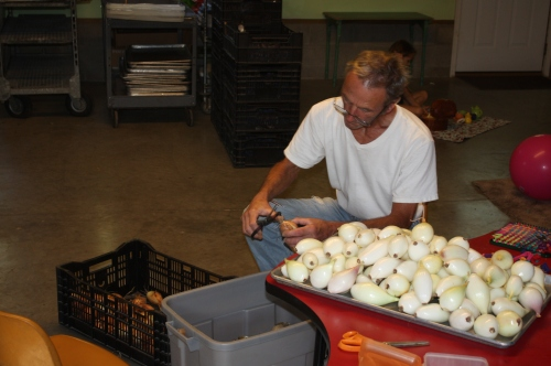 Scott cleaning this week's onion harvest.