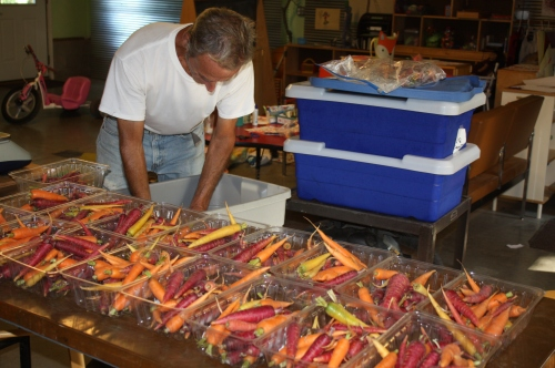 Scott weighing out the carrots for this week's share.