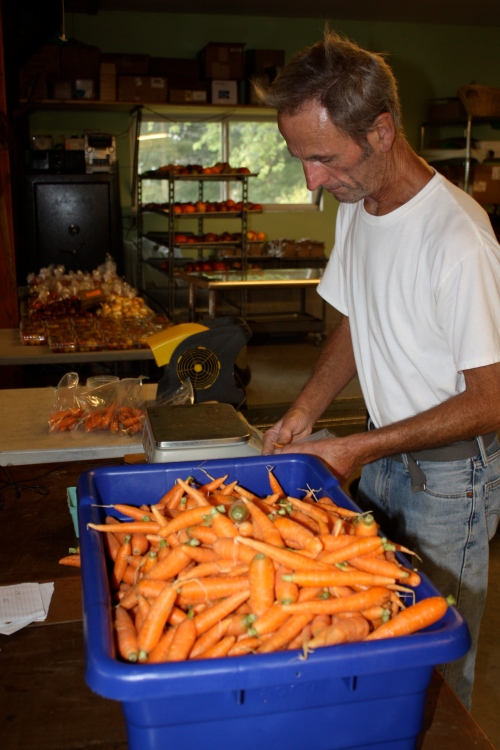 Scott weighing out the carrots.