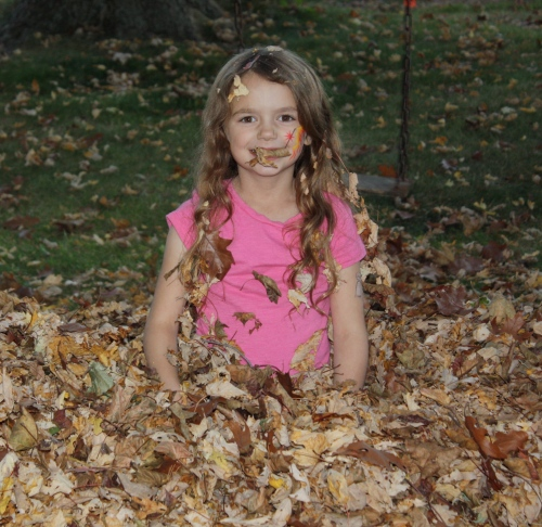 Maeve at the end of the leaf pile fun....