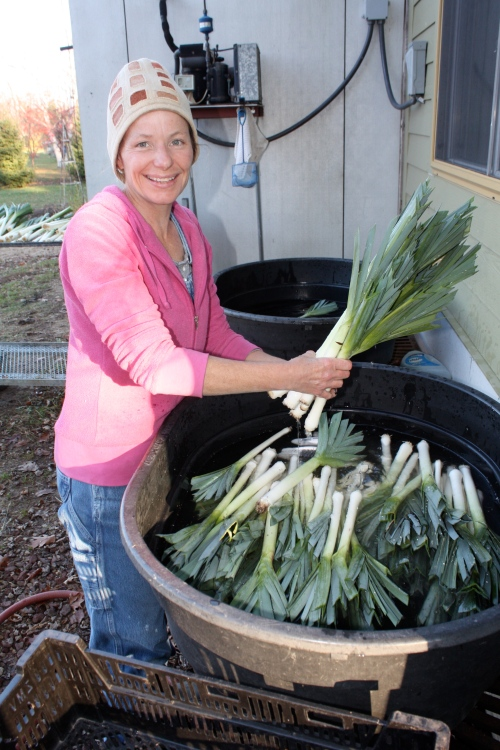 Leek washing.